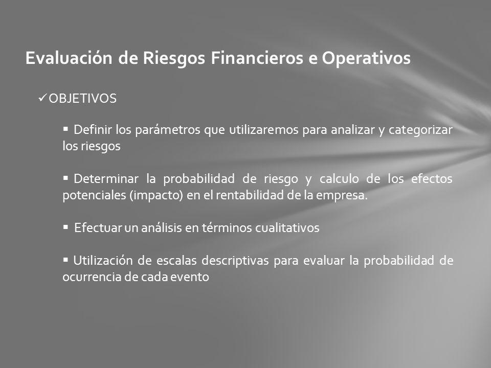 Evaluación de Riesgos Financieros e Operativos OBJETIVOS Definir los parámetros que utilizaremos para analizar y categorizar los riesgos Determinar la