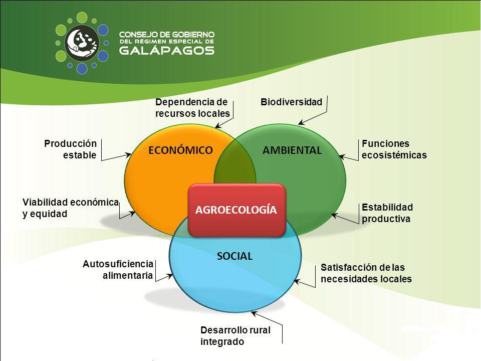 ECONÓMICOAMBIENTAL SOCIAL AGROECOLOGÍA Dependencia de recursos locales Producción estable Viabilidad económica y equidad Biodiversidad Funciones ecosi