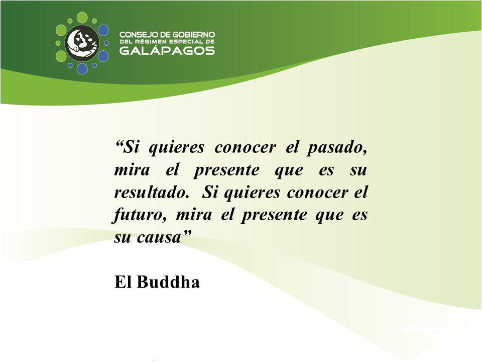 Si quieres conocer el pasado, mira el presente que es su resultado. Si quieres conocer el futuro, mira el presente que es su causa El Buddha
