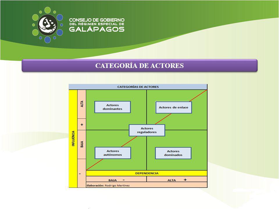 CATEGORÍA DE ACTORES