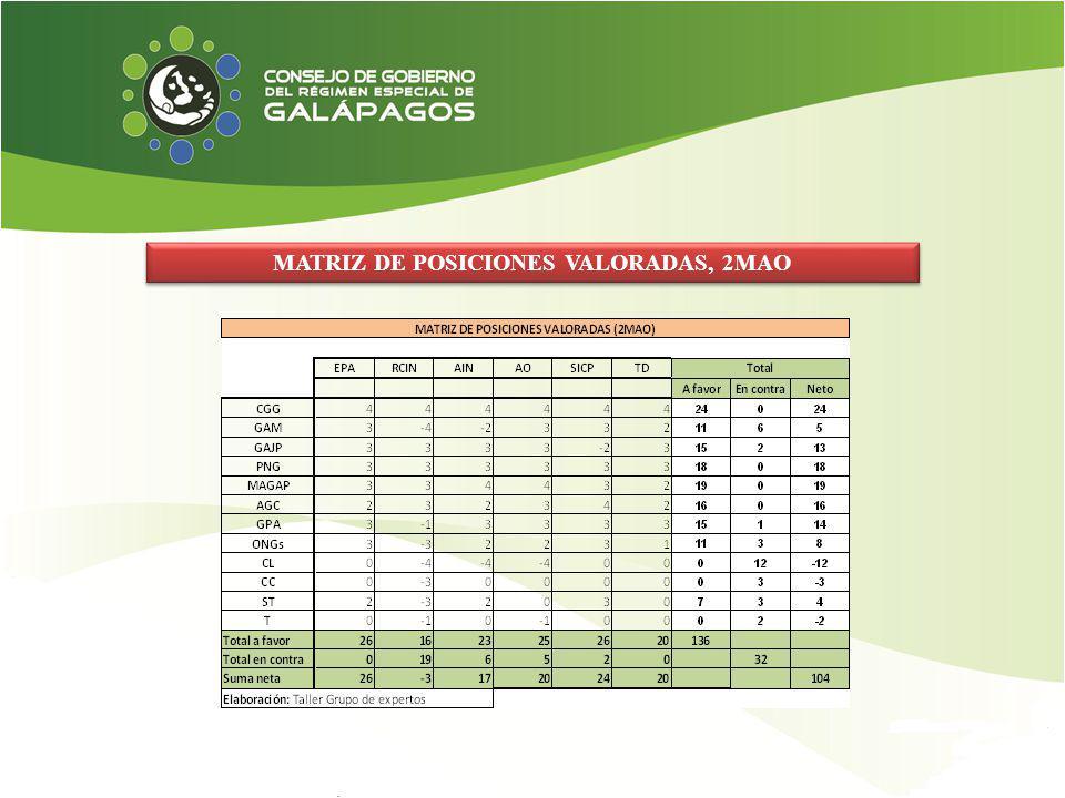 MATRIZ DE POSICIONES VALORADAS, 2MAO