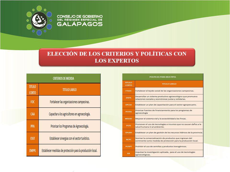 ELECCIÓN DE LOS CRITERIOS Y POLÍTICAS CON LOS EXPERTOS