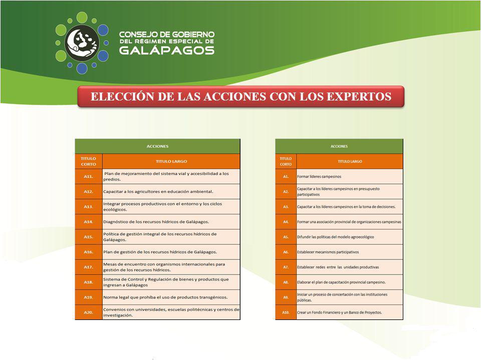 ELECCIÓN DE LAS ACCIONES CON LOS EXPERTOS