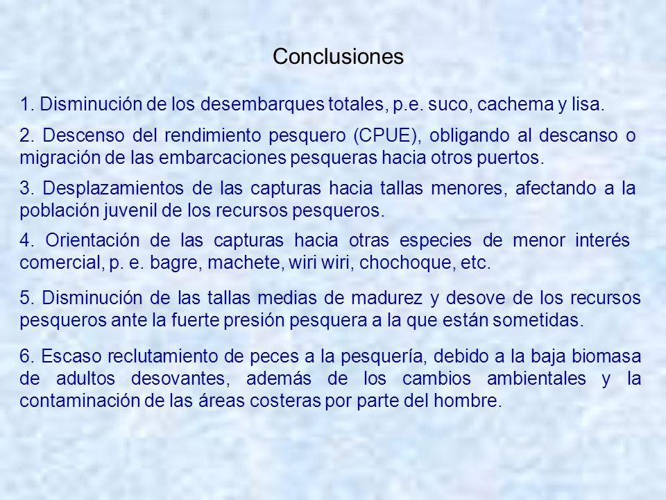 Conclusiones 1. Disminución de los desembarques totales, p.e. suco, cachema y lisa. 2. Descenso del rendimiento pesquero (CPUE), obligando al descanso