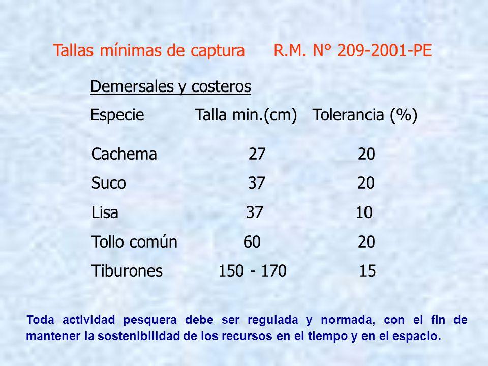 Demersales y costeros Especie Talla min.(cm) Tolerancia (%) Cachema 27 20 Suco 37 20 Lisa 37 10 Tollo común 60 20 Tiburones 150 - 170 15 Tallas mínima