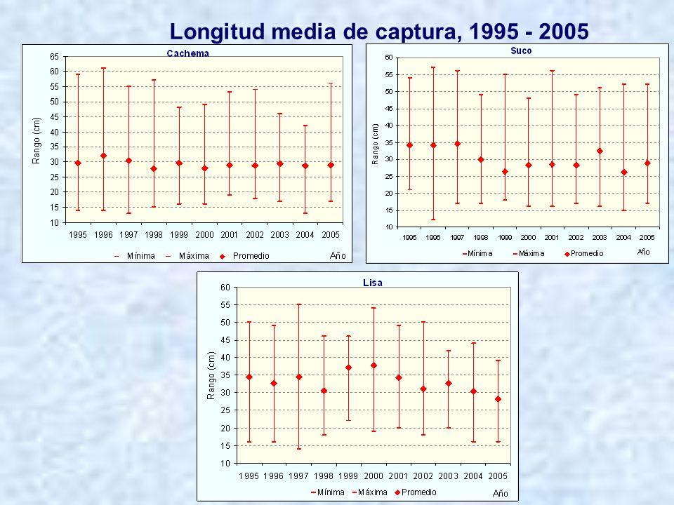 Diferencias en la distribución de tallas, periodos: 1995 – 1999 vs 2000 – 2004
