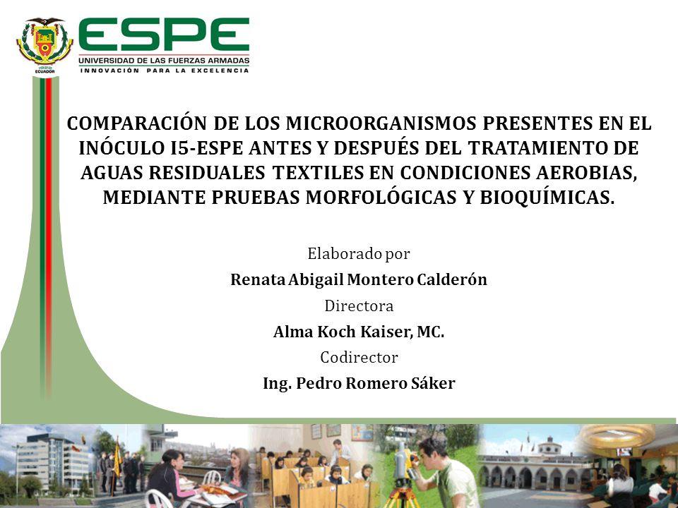 COMPARACIÓN DE LOS MICROORGANISMOS PRESENTES EN EL INÓCULO I5-ESPE ANTES Y DESPUÉS DEL TRATAMIENTO DE AGUAS RESIDUALES TEXTILES EN CONDICIONES AEROBIA