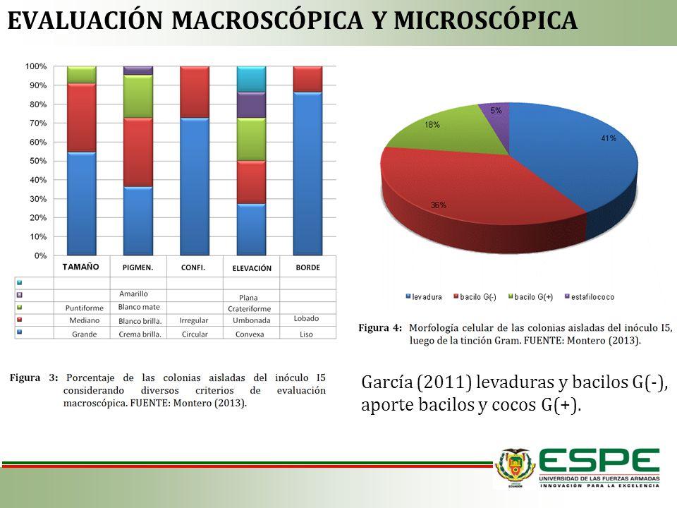 EVALUACIÓN MACROSCÓPICA Y MICROSCÓPICA García (2011) levaduras y bacilos G(-), aporte bacilos y cocos G(+).