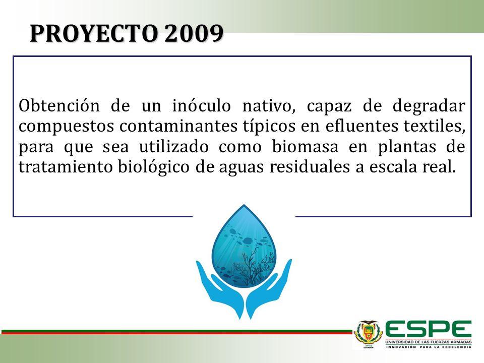 Obtención de un inóculo nativo, capaz de degradar compuestos contaminantes típicos en efluentes textiles, para que sea utilizado como biomasa en plant