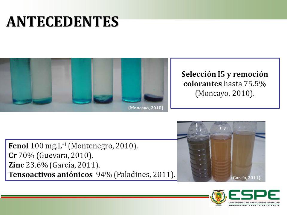 Selección I5 y remoción colorantes hasta 75.5% (Moncayo, 2010). Fenol 100 mg.L -1 (Montenegro, 2010). Cr 70% (Guevara, 2010). Zinc 23.6% (García, 2011