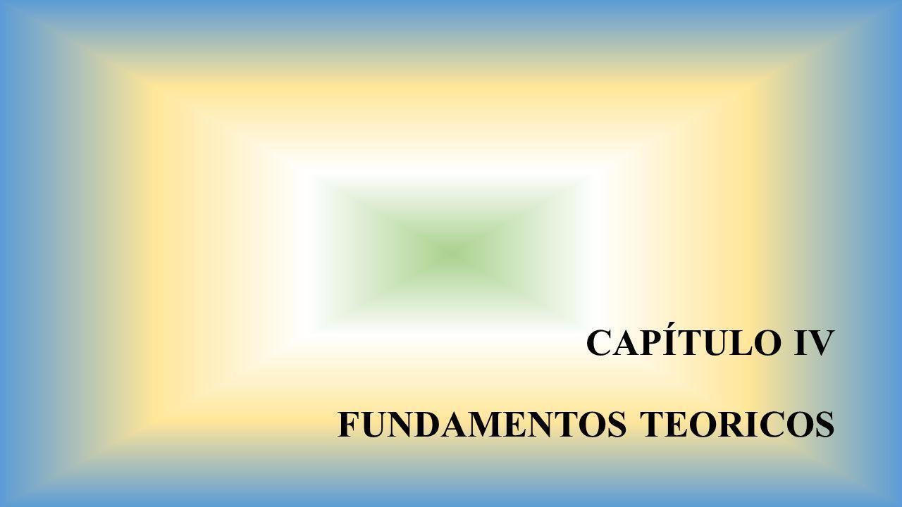 CAPÍTULO IV FUNDAMENTOS TEORICOS