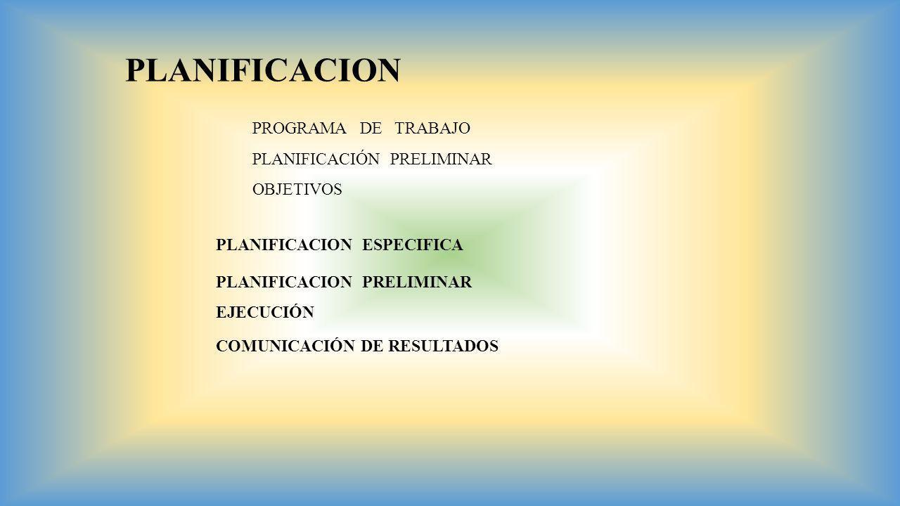 PLANIFICACION PROGRAMA DE TRABAJO PLANIFICACIÓN PRELIMINAR OBJETIVOS PLANIFICACION PRELIMINAR PLANIFICACION ESPECIFICA EJECUCIÓN COMUNICACIÓN DE RESUL
