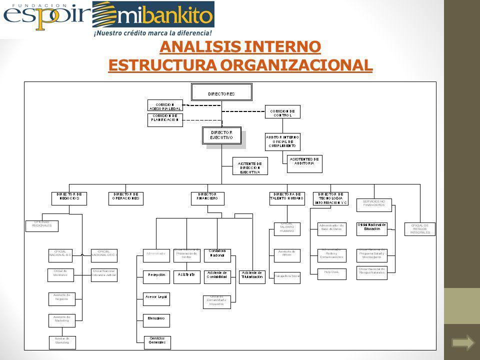 ANALISIS INTERNO ESTRUCTURA ORGANIZACIONAL