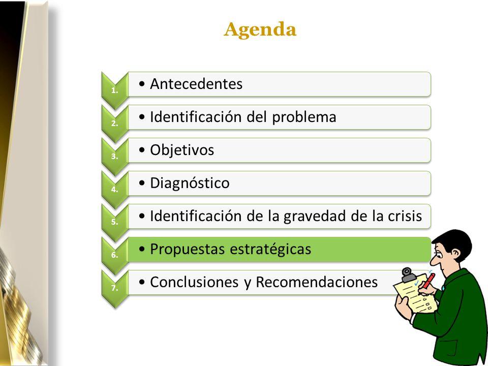 Agenda 1. Antecedentes 2. Identificación del problema 3. Objetivos 4. Diagnóstico 5. Identificación de la gravedad de la crisis 6. Propuestas estratég