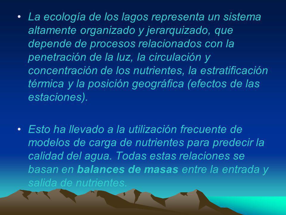 La ecología de los lagos representa un sistema altamente organizado y jerarquizado, que depende de procesos relacionados con la penetración de la luz,