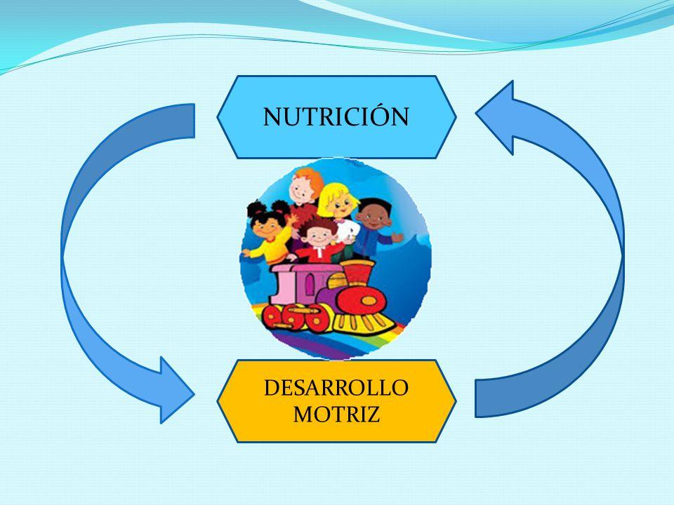 NUTRICIÓN DESARROLLO MOTRIZ