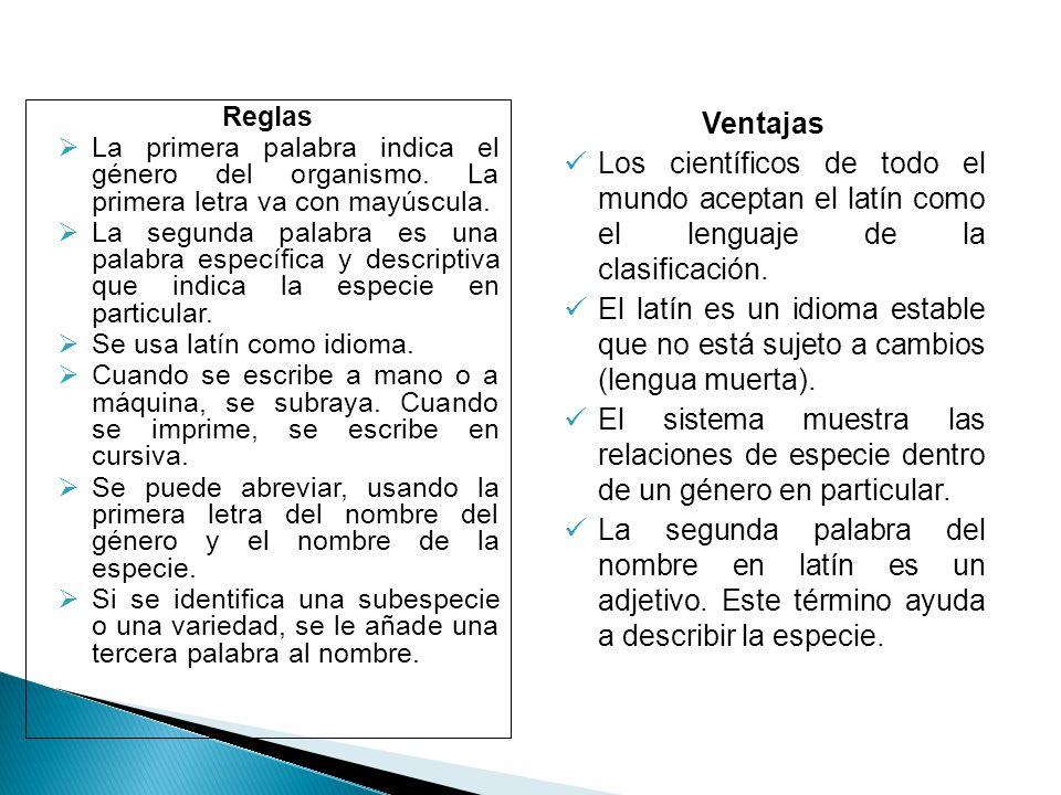 Ventajas Los científicos de todo el mundo aceptan el latín como el lenguaje de la clasificación.