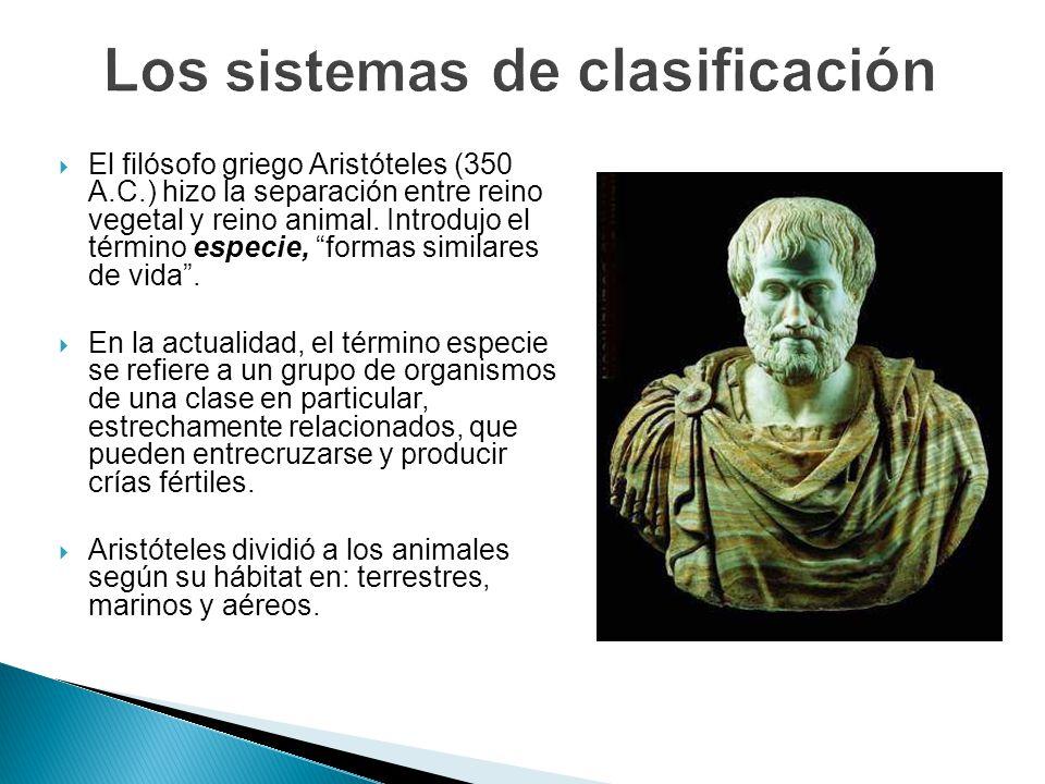 El filósofo griego Aristóteles (350 A.C.) hizo la separación entre reino vegetal y reino animal. Introdujo el término especie, formas similares de vid