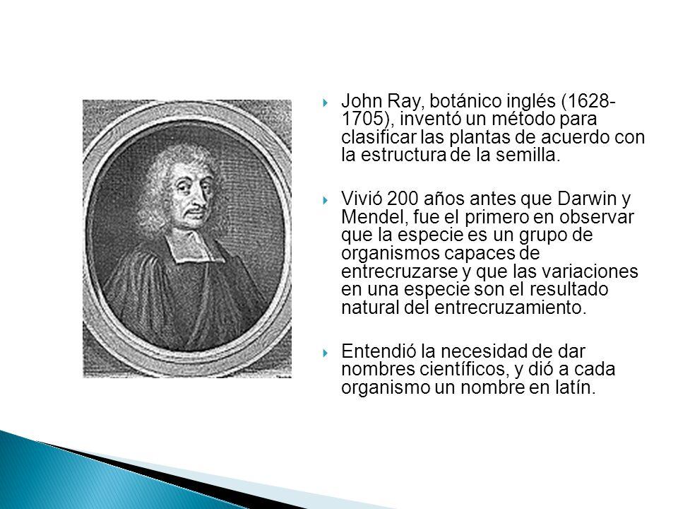 John Ray, botánico inglés (1628- 1705), inventó un método para clasificar las plantas de acuerdo con la estructura de la semilla. Vivió 200 años antes
