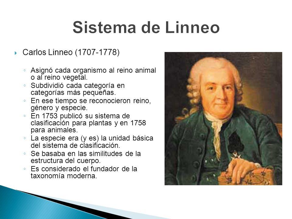Carlos Linneo (1707-1778) Asignó cada organismo al reino animal o al reino vegetal. Subdividió cada categoría en categorías más pequeñas. En ese tiemp