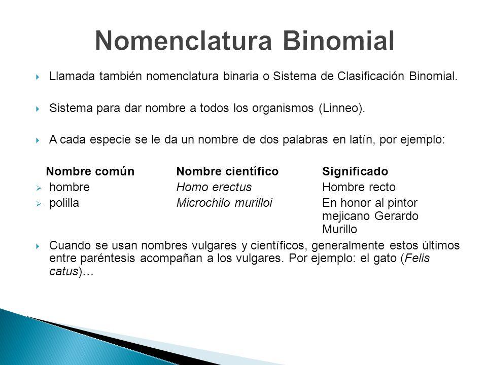 Llamada también nomenclatura binaria o Sistema de Clasificación Binomial. Sistema para dar nombre a todos los organismos (Linneo). A cada especie se l