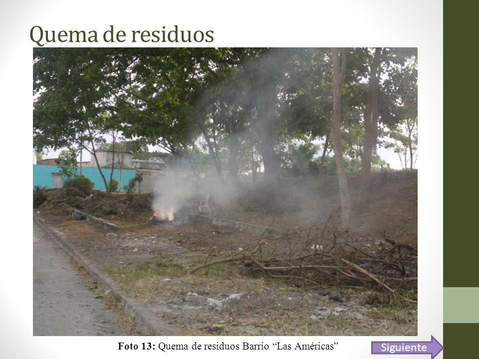 Quema de residuos Foto 13: Quema de residuos Barrio Las Américas Siguiente