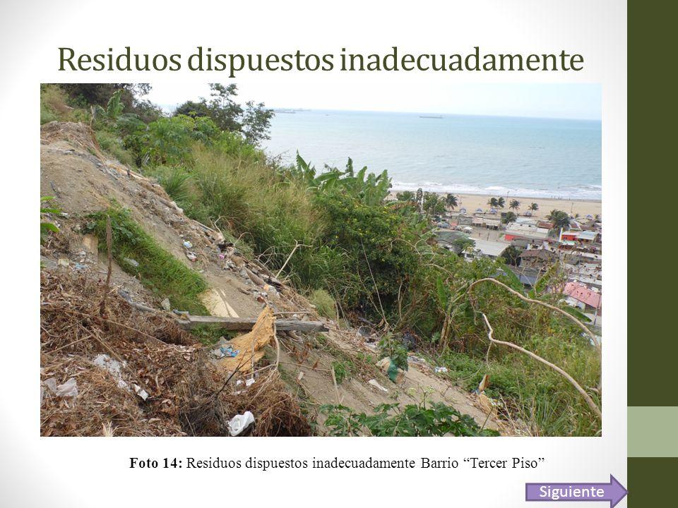 Residuos dispuestos inadecuadamente Foto 14: Residuos dispuestos inadecuadamente Barrio Tercer Piso Siguiente