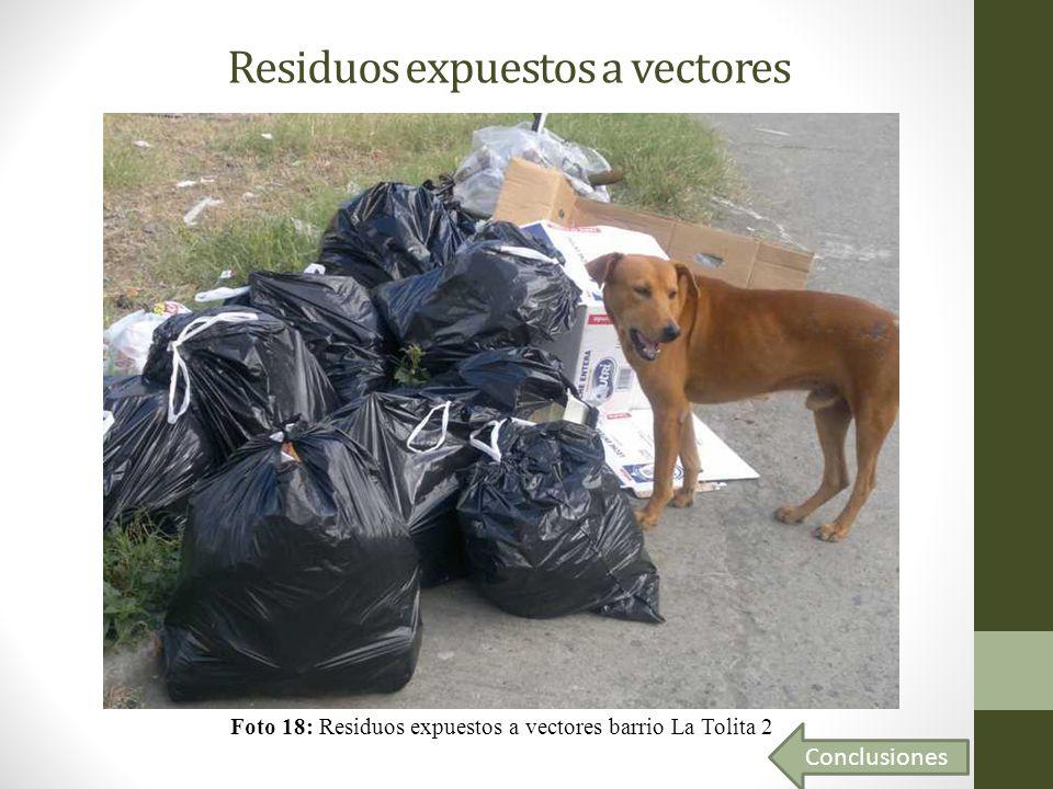 Residuos expuestos a vectores Foto 18: Residuos expuestos a vectores barrio La Tolita 2 Conclusiones