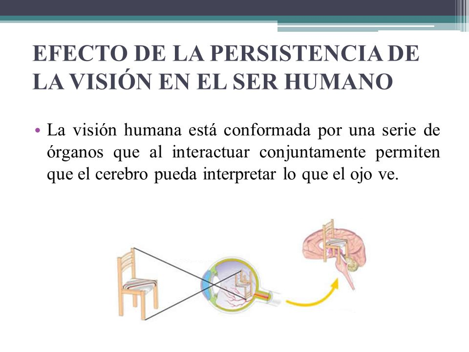 EFECTO DE LA PERSISTENCIA DE LA VISIÓN EN EL SER HUMANO La visión humana está conformada por una serie de órganos que al interactuar conjuntamente per