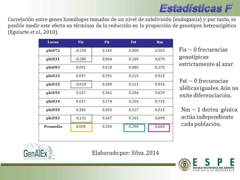 Correlación entre genes homólogos tomados de un nivel de subdivisión (endogamia) y por tanto, es posible medir este efecto en términos de la reducción en la proporción de genotipos heterocigótico (Eguiarte et al., 2010).