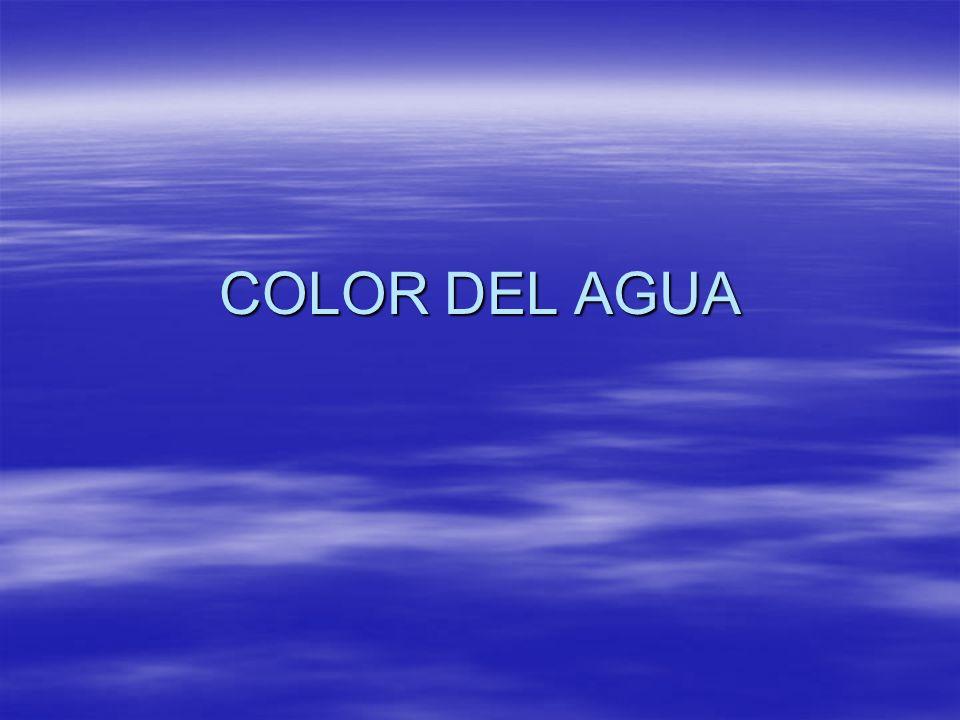 Introduccion Sabemos desde la escuela que el agua es incolora Sabemos desde la escuela que el agua es incolora El color aumenta la sospecha del usuario sobre la existencia de materia indeseable.