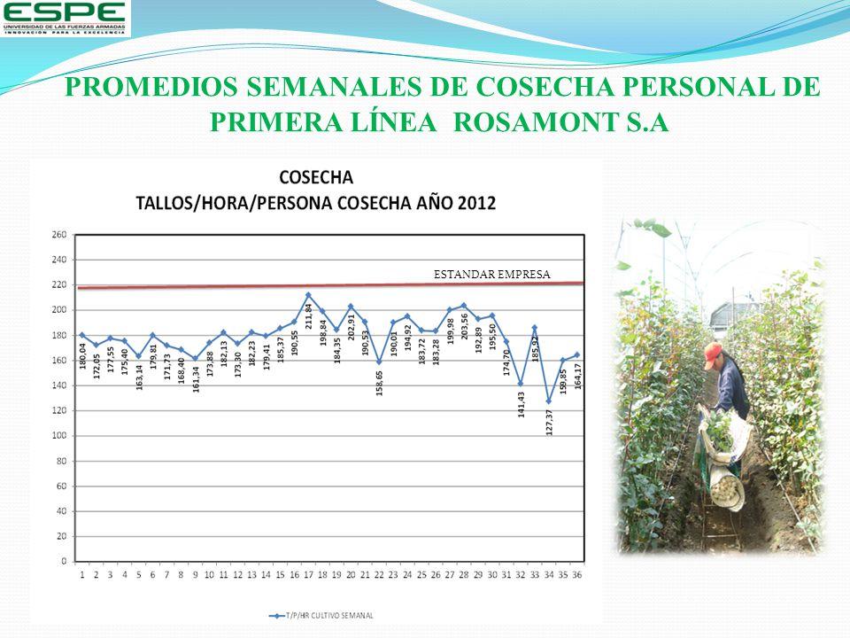 PROMEDIOS SEMANALES DE COSECHA PERSONAL DE PRIMERA LÍNEA ROSAMONT S.A ESTANDAR EMPRESA