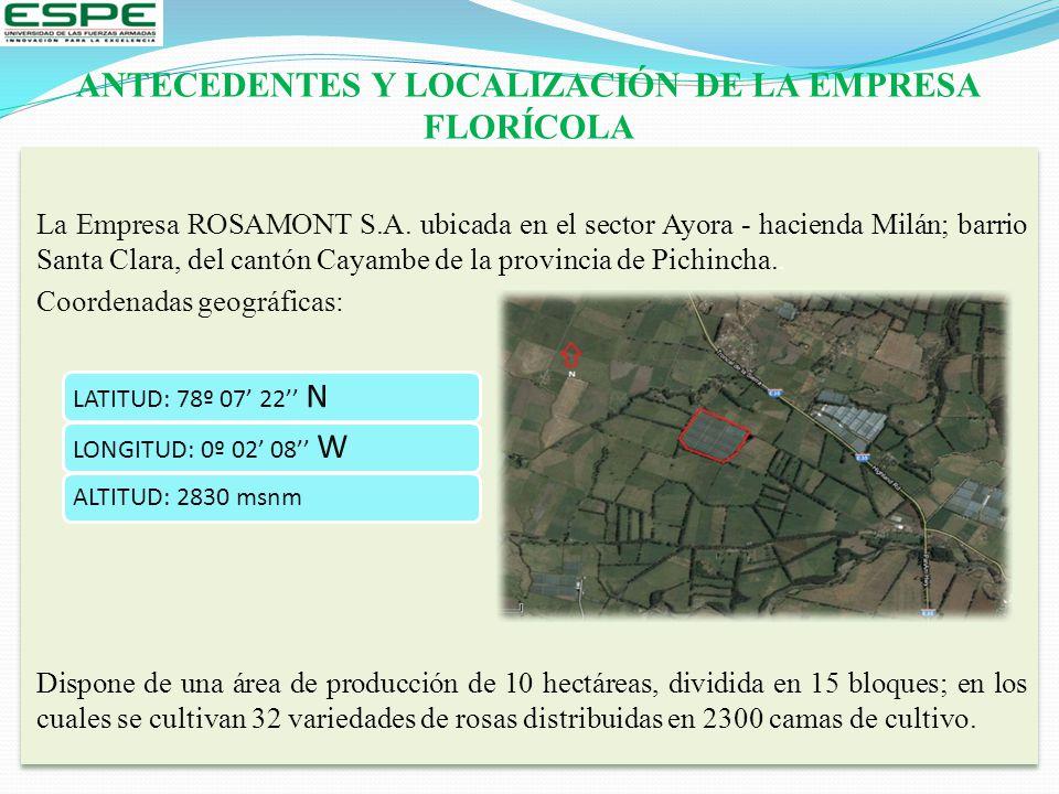 ANTECEDENTES Y LOCALIZACIÓN DE LA EMPRESA FLORÍCOLA La Empresa ROSAMONT S.A. ubicada en el sector Ayora - hacienda Milán; barrio Santa Clara, del cant