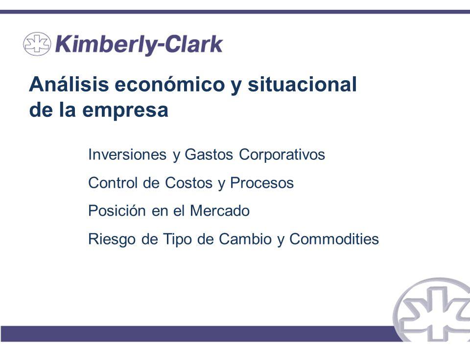 Análisis económico y situacional de la empresa Inversiones y Gastos Corporativos Control de Costos y Procesos Posición en el Mercado Riesgo de Tipo de