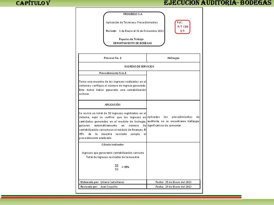 CAPÍTULO V EJECUCIÓN AUDITORÍA- BODEGAS