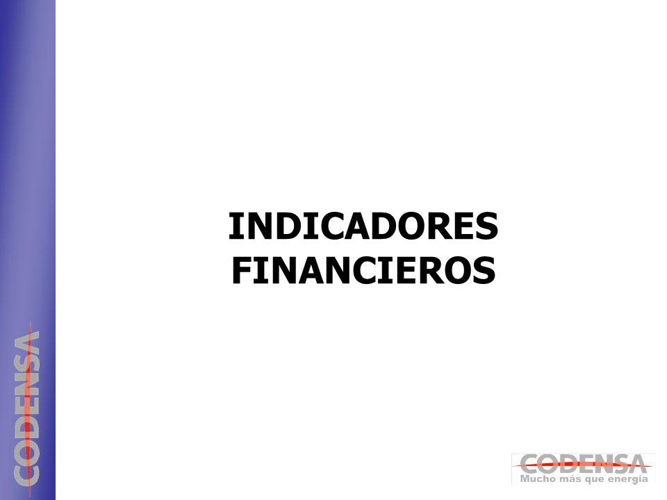 21 ENDESA INDICADORES FINANCIEROS