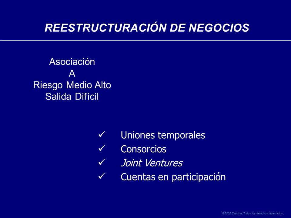 © 2005 Deloitte. Todos los derechos reservados.