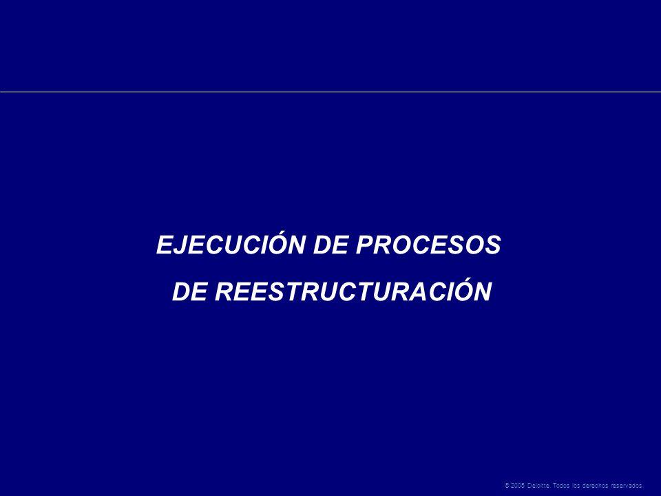 © 2005 Deloitte. Todos los derechos reservados. EJECUCIÓN DE PROCESOS DE REESTRUCTURACIÓN
