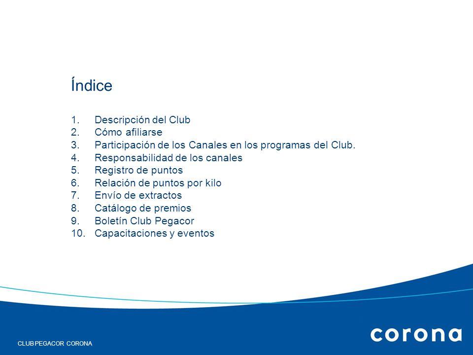 RESULTADOS DEL ESTUDIO DE SATISFACCIÓN DE CLIENTES. 18 de enero de 2006 INFORME CLUB INSTALACCIÓN Índice 1.Descripción del Club 2.Cómo afiliarse 3.Par