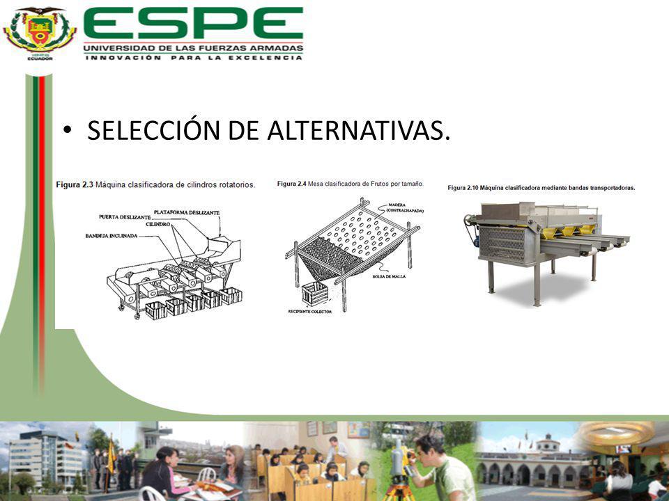SELECCIÓN DE ALTERNATIVAS.