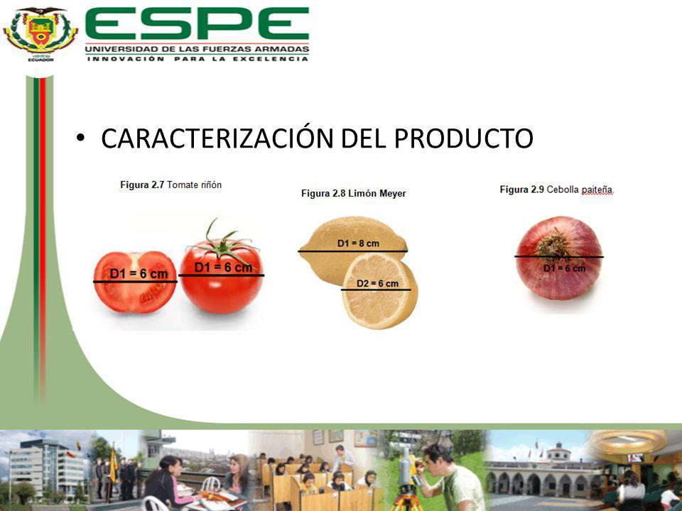 REQUISITOS Y RESTRICCIONES EVITAR IMPORTACIÓN.5 TAMAÑOS DE CLASIFICACIÓN.