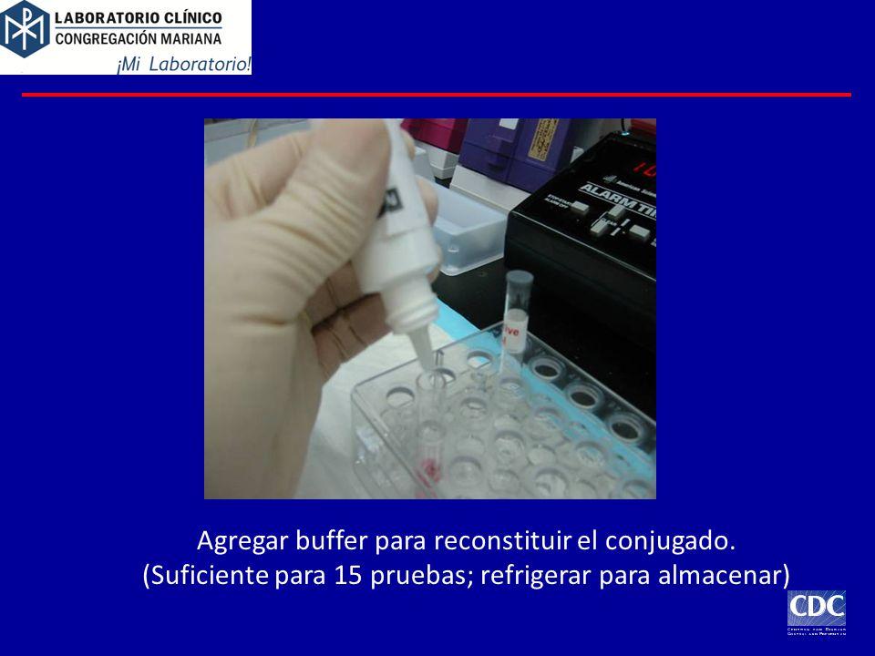 Agregar buffer para reconstituir el conjugado. (Suficiente para 15 pruebas; refrigerar para almacenar)