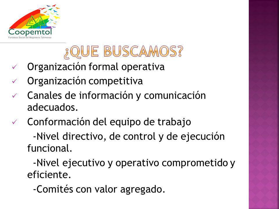 Organización formal operativa Organización competitiva Canales de información y comunicación adecuados. Conformación del equipo de trabajo -Nivel dire