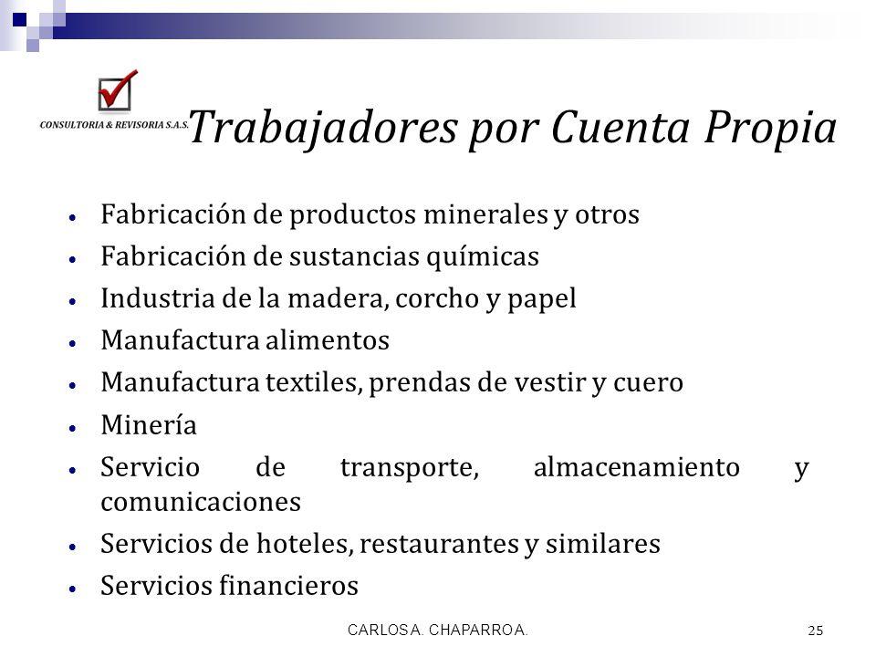 CARLOS A. CHAPARRO A. 25 Trabajadores por Cuenta Propia Fabricación de productos minerales y otros Fabricación de sustancias químicas Industria de la
