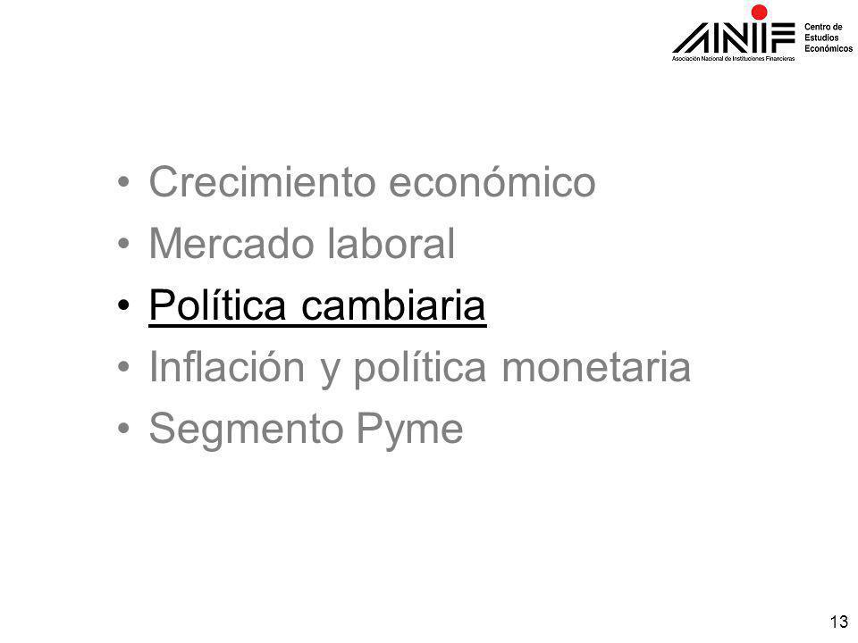 13 Crecimiento económico Mercado laboral Política cambiaria Inflación y política monetaria Segmento Pyme
