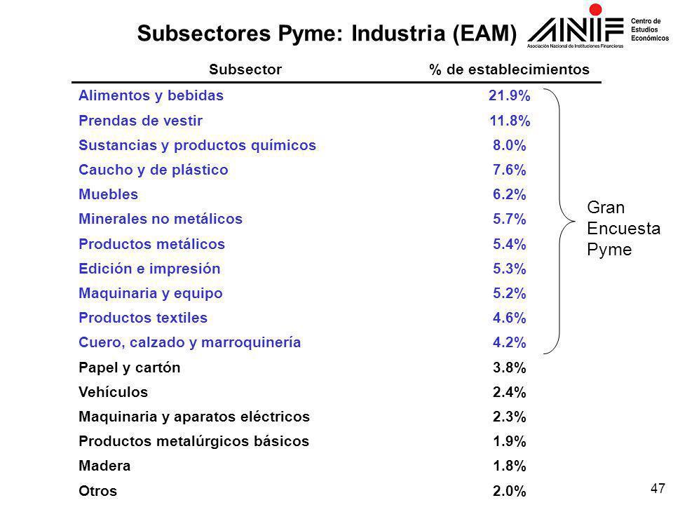 47 Subsectores Pyme: Industria (EAM) Subsector% de establecimientos Alimentos y bebidas21.9% Prendas de vestir11.8% Sustancias y productos químicos8.0% Caucho y de plástico7.6% Muebles6.2% Minerales no metálicos5.7% Productos metálicos5.4% Edición e impresión5.3% Maquinaria y equipo5.2% Productos textiles4.6% Cuero, calzado y marroquinería4.2% Papel y cartón3.8% Vehículos2.4% Maquinaria y aparatos eléctricos2.3% Productos metalúrgicos básicos1.9% Madera1.8% Otros2.0% Gran Encuesta Pyme