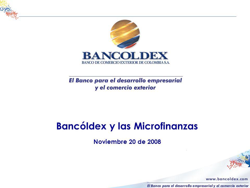 Bancóldex y las Microfinanzas Noviembre 20 de 2008