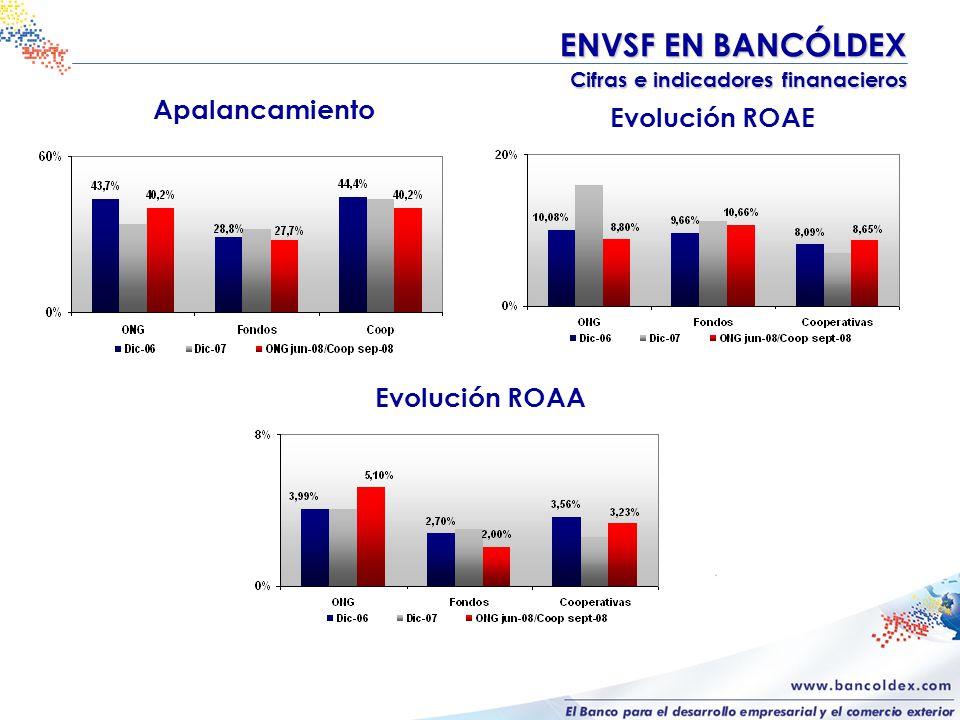 Evolución ROAE ENVSF EN BANCÓLDEX Cifras e indicadores finanacieros Cifras e indicadores finanacieros Apalancamiento Evolución ROAA