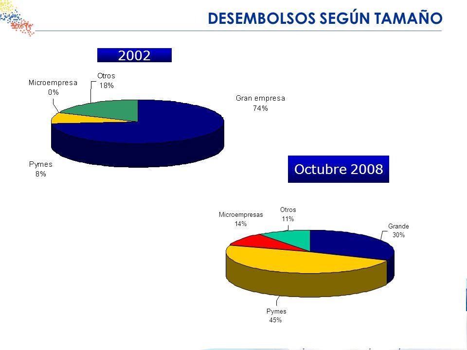 2002 Octubre 2008 DESEMBOLSOS SEGÚN TAMAÑO Otros 11% Microempresas 14% Pymes 45% Grande 30%