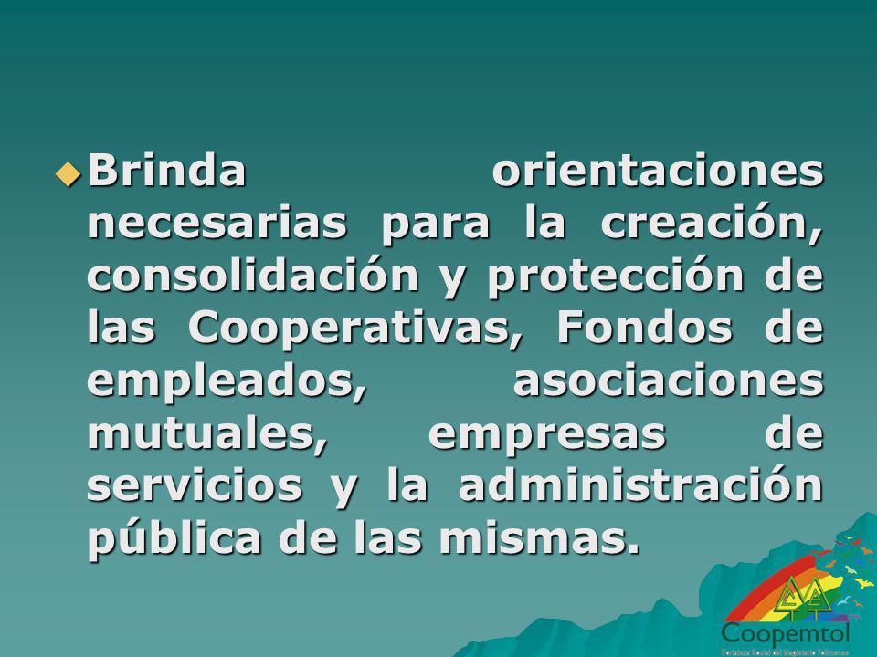 Brinda orientaciones necesarias para la creación, consolidación y protección de las Cooperativas, Fondos de empleados, asociaciones mutuales, empresas